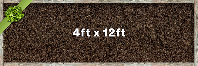 4x12 Planter.png