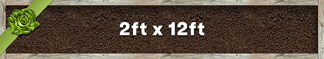 2x12 Planter.png