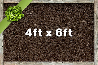 4x6 Planter.png
