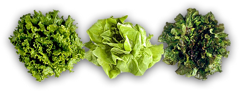 greens.png