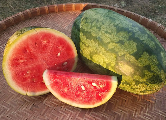 Watermelon, Nancy