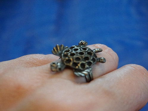 turtle on ring