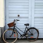 Location vélos homme/femme