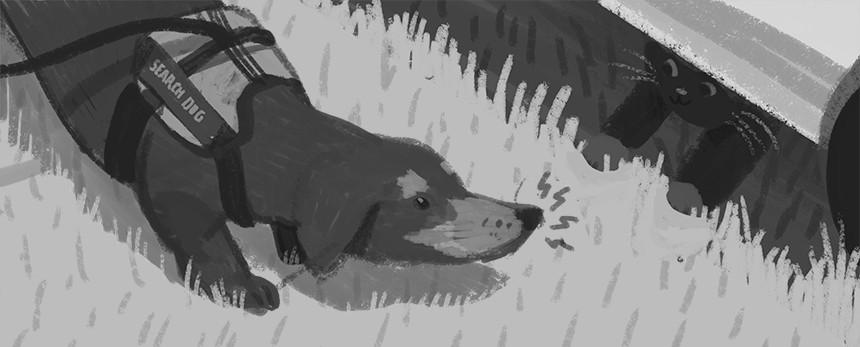 PD_Sketch3.jpg