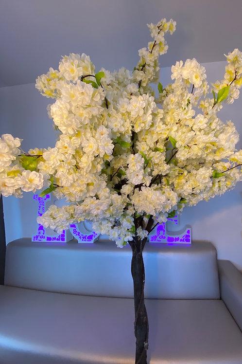 Arbre Cerisier