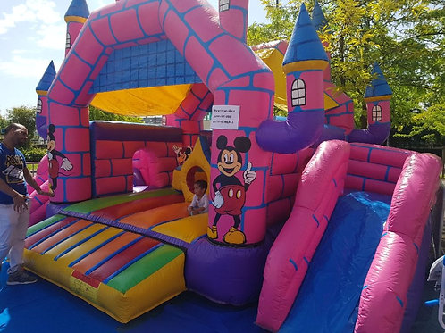 Château Mickey