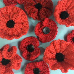 Remembrance Sunday knitted Poppies