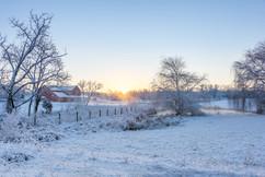 Winter--11225.jpg
