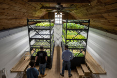 Babylon-Micro-Farms--33.jpg