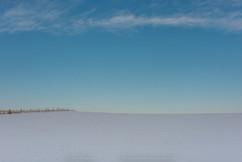 Winter--2-5.jpg