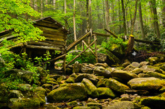 Smokie-Mountains-National-Park-0005.jpg