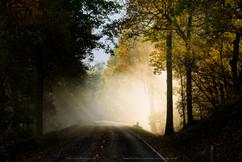 Shenandoah-National-Park-Fall-2014-0000.