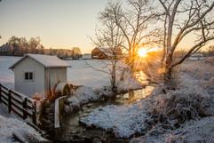 Winter--11301.jpg