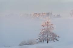 Winter--(66-of-1)-3.jpg
