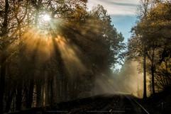 Shenandoah-National-Park-Fall-2014-0004.
