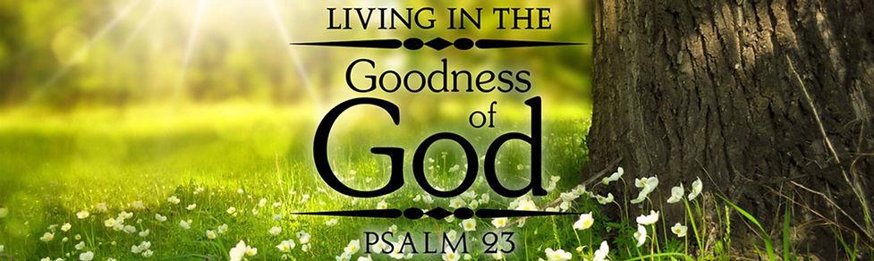 Psalm 23 wide banner.jpg