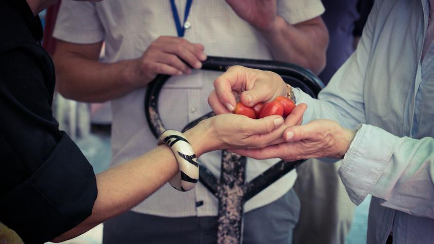 sol food -website banner - tomatoes 2.pn
