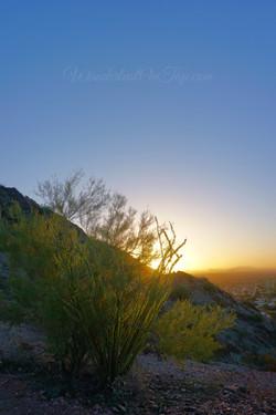 Sunrise Phoenix September 2016