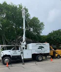 Artistic_Trees_Bucket_Truck_02.png
