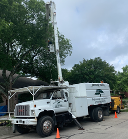 Artistic_Trees_Bucket_Truck_01.png