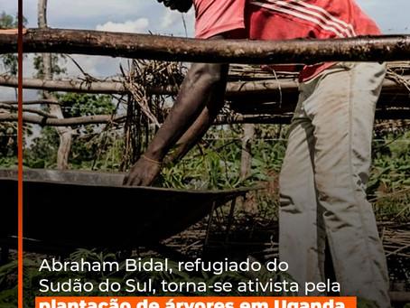 Abraham Bidal, refugiado do Sudão do Sul, torna-se ativista pela plantação de árvores em Uganda.