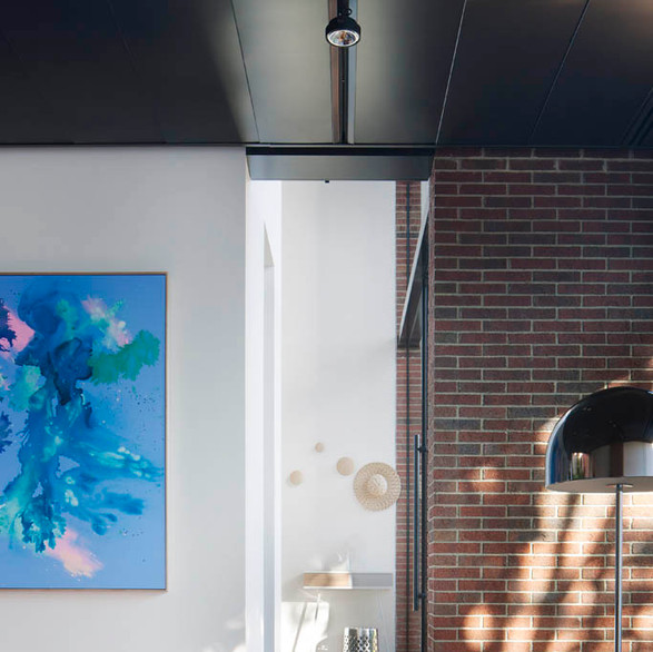 'Lunar Wrasse' painting installed in #AbstractHouse architecture and interiors by Matt Gibson A+D. Photography: Shannon McGrath.
