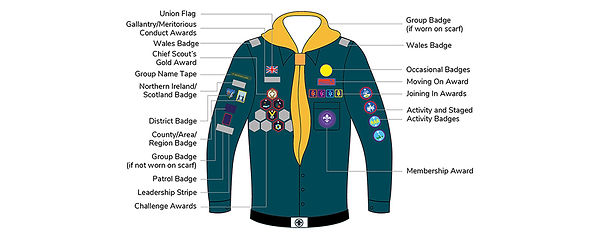 Badge_Placement_Scouts.jpeg