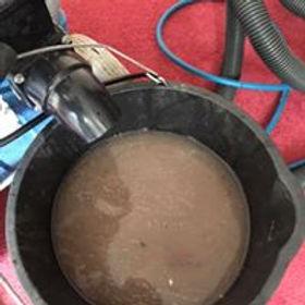 carpet clean dirty bucket.jpg