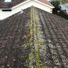 roof 1a.jpg