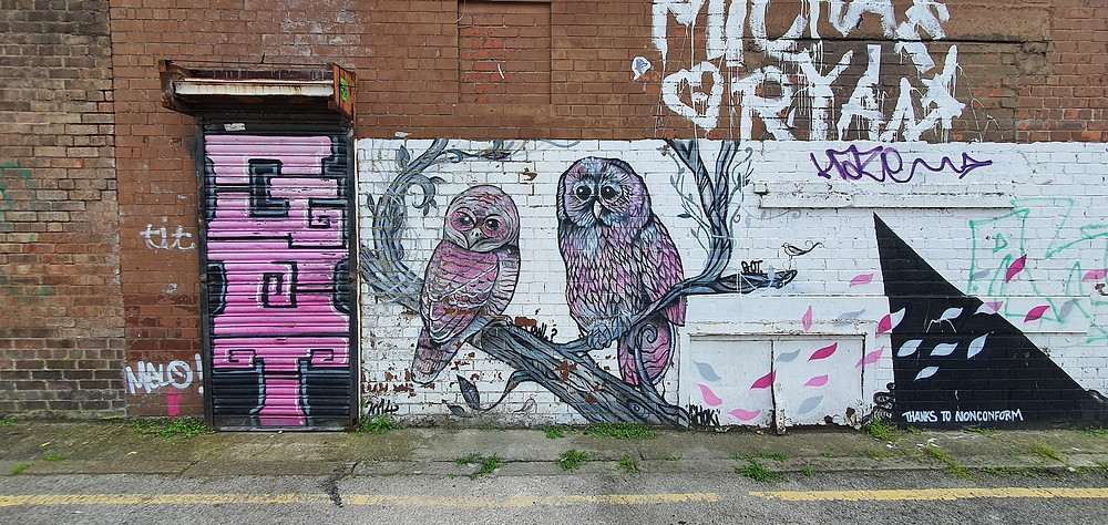Street Art Owls on New Bird Street in The Baltic Triangle, Liverpool City Centre (Credit: Peter Eric Lang/ Nonconform).