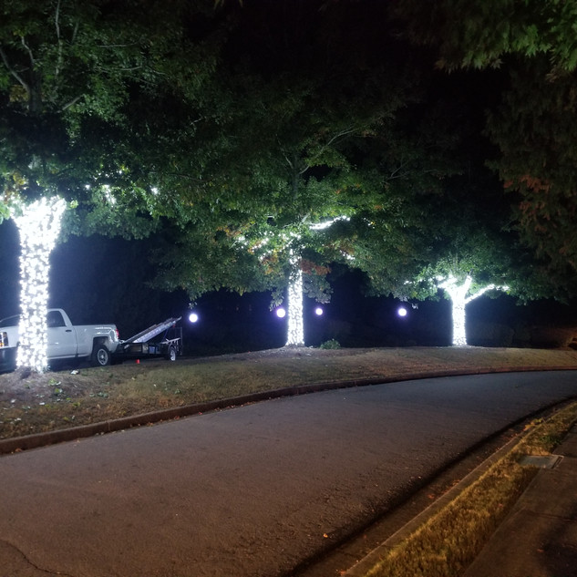 Commercial tree wraps holiday lighting