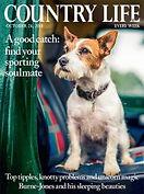 Digital Magazine Cover - Country Life