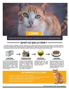CSRM.png