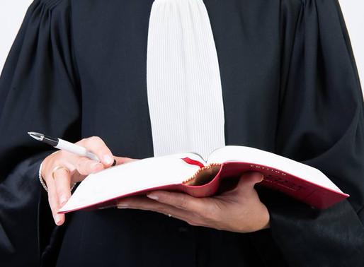 Nos fidèles compagnons et la loi