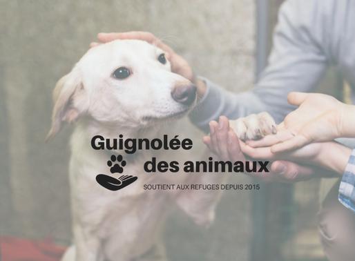Une Guignolée à l'année pour les refuges du Québec !