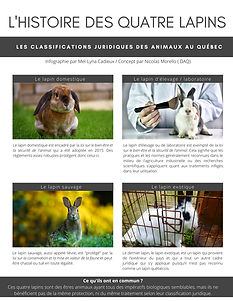 L'histoire des quatre lapins.png