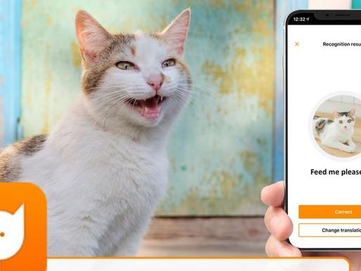Une application qui peut traduire les miaulements de votre chat ?