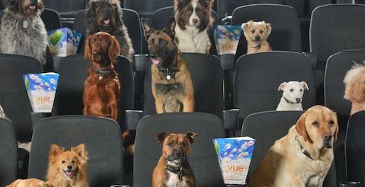 Les animaux au cinéma