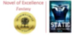 Static award novel of excellence.jpg