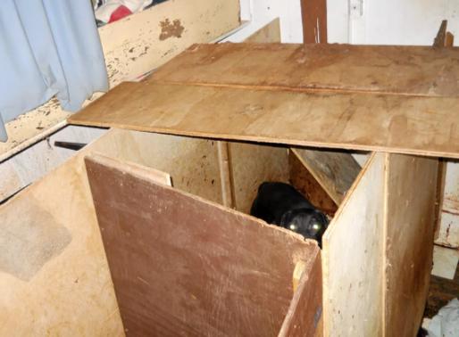 La Tuque : Grave cas de cruauté animale, l'accusé déclaré coupable