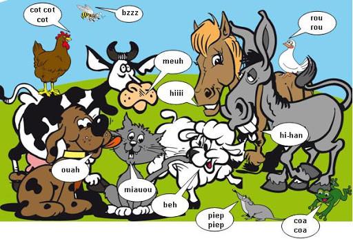 Les animaux s'expriment !