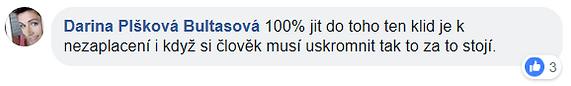 Dana Plšková.PNG