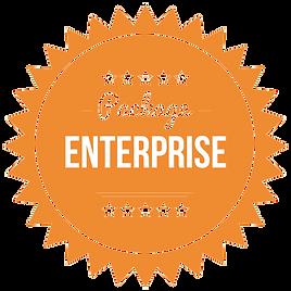 enterprise (1)-min.png