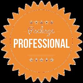 professional (2)-min.png