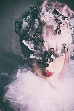 Butterfly|Art Work