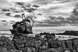 The Meisho Maru Perch
