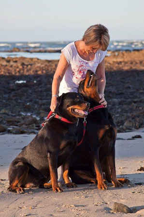 Pet Photography in Cape Town South Africa