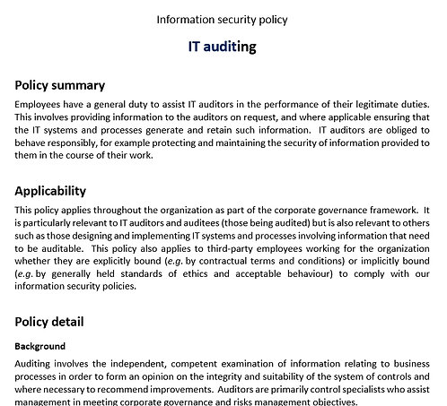 IT auditing policy