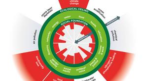 A Post-COVID-19 Doughnut-Shaped Economy