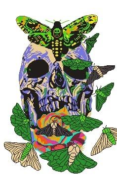 Legendary Skull